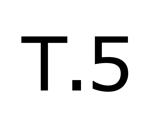 5 (2XL)
